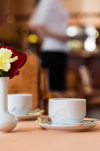 PPA_Franz_Josef_Cafe (4)